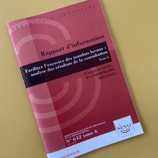 Faciliter l'exercice des mandats locaux : analyse des résultats de la consultation