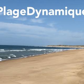 La plage dynamique : une mobilisation payante